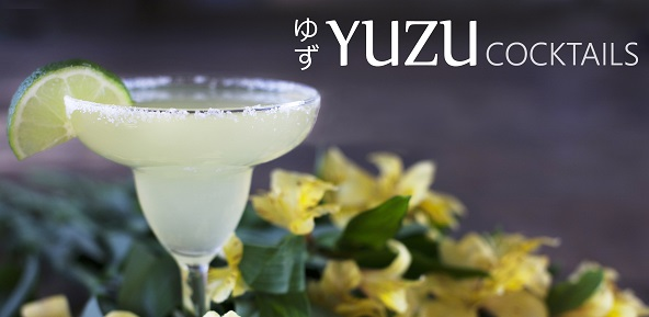 Yuzu Cocktails