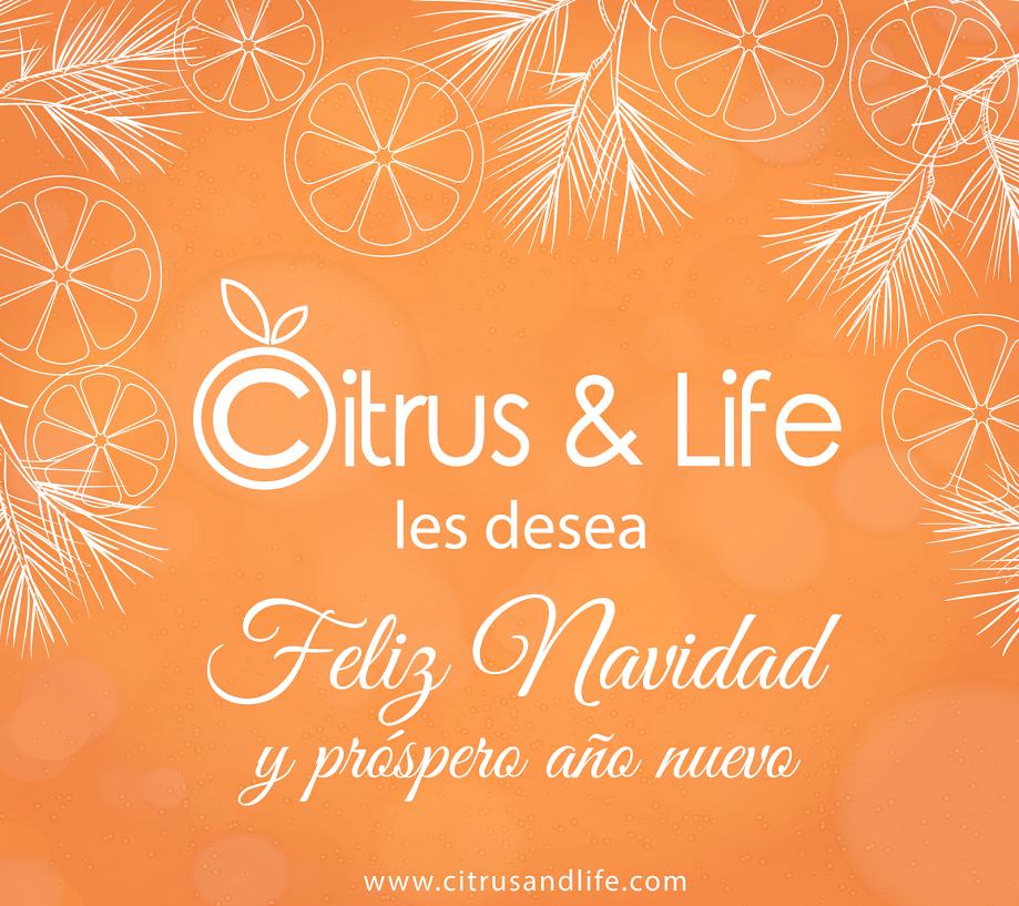 Citrus & Life ~ Navidad